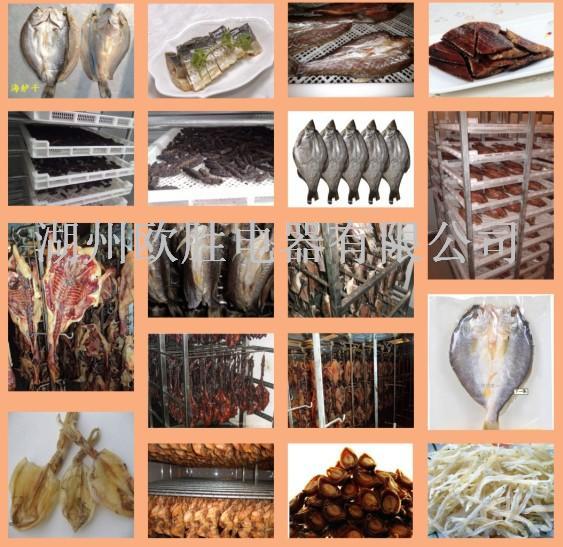 肉制品冷风风干机 肉制品烘干机