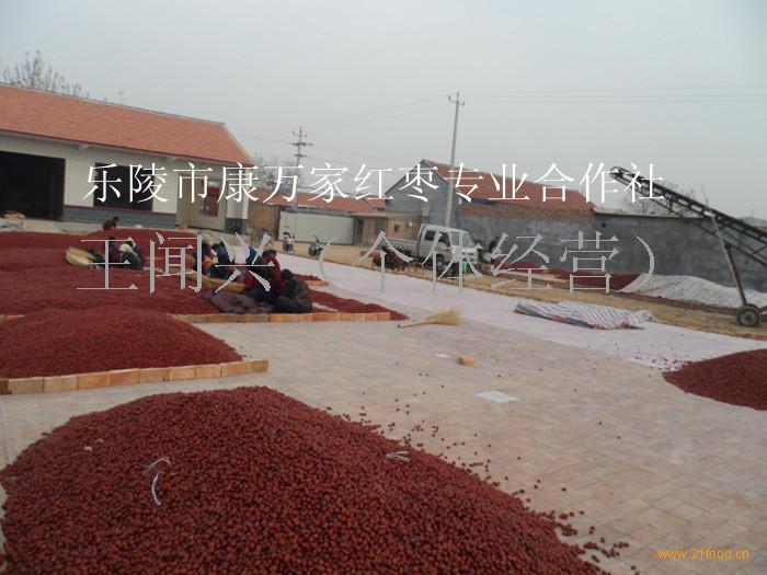 红枣供应商