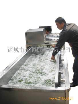 气泡果蔬清洗机