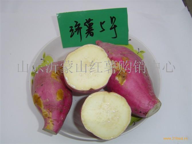 供应常年供应济薯5号红薯