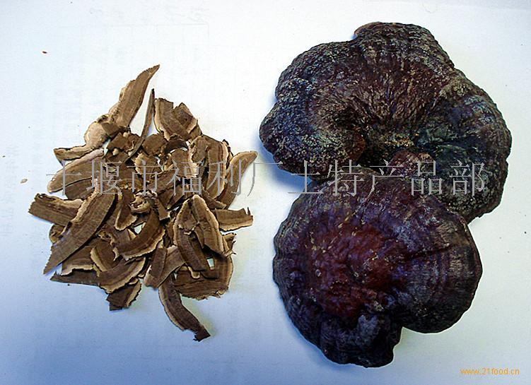 神农架野生灵芝-中国-食品商务网