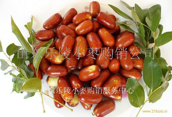 鲜长红枣收购价格