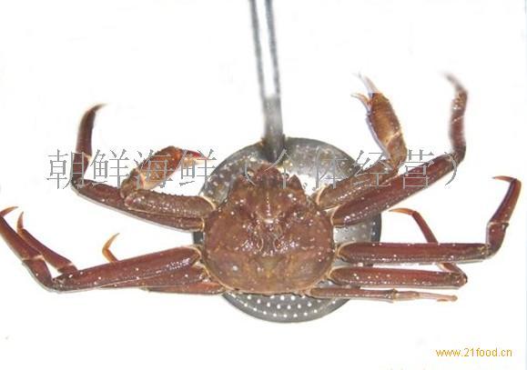 朝鲜海鲜板蟹