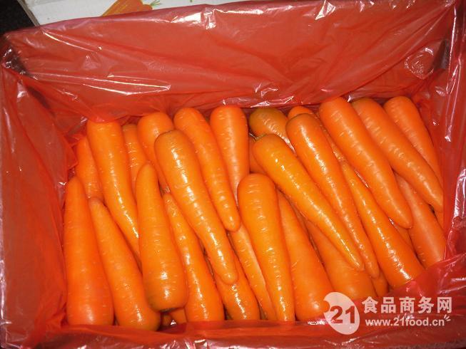 出口印尼沙特韩国保鲜胡萝卜