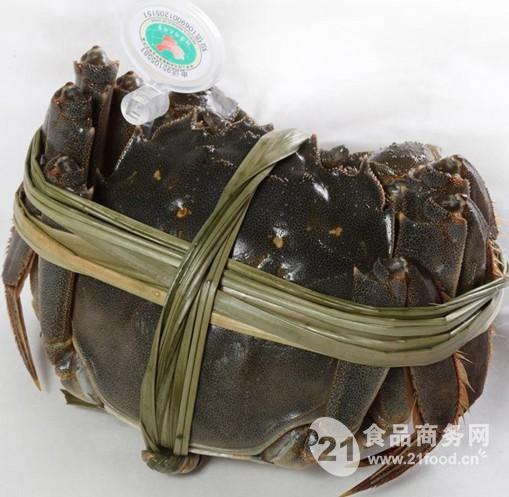 陽澄湖大閘蟹的做法