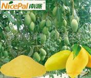海南芒果粉