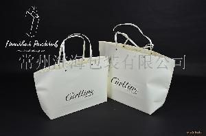 专业生产 创意纸袋 尖底袋 风琴袋 环保纸袋 礼品袋 服装袋 购物袋 手提袋
