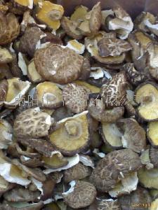 干香菇西峡香菇脱水香菇光面香菇