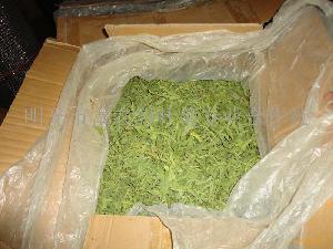 出口及、100%绿色、甜叶菊茶