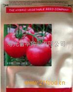 番茄种子——凯莱