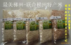 糯米,红米,水稻