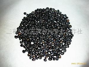 有机青仁黑豆