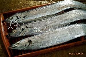 """""""大连湾""""渤海湾刀鱼"""