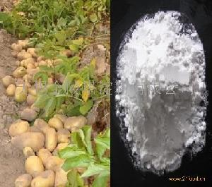 马铃薯变性淀粉