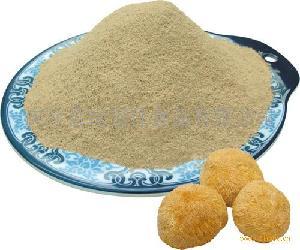 猴头菇细粉