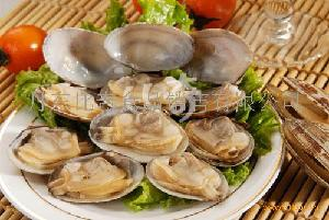 即食原汁杂色蛤罐头