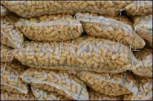 豆制品豆肠