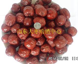 山东乐陵大红枣