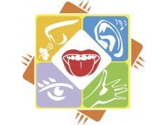 食品感官评定-食品检测-食品测试