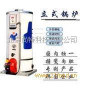 小型燃气锅炉
