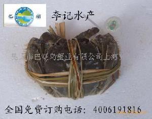 北京陽澄湖大閘蟹