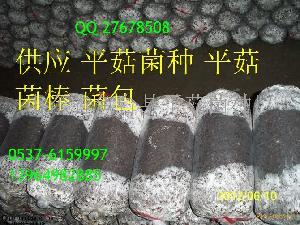 平菇食用菌菌棒