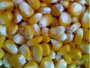 國家溫江糧食儲備大量收玉米小麥