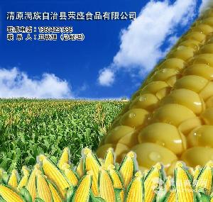 速冻糯玉米棒