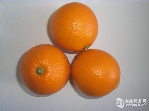 羅伯遜臍橙