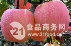 山东苹果代办  山东红富士苹果批发价格