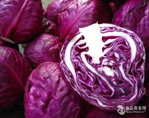 紫甘蓝提取物 紫甘蓝粉